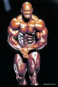 Flex Wheeler 1998 IM