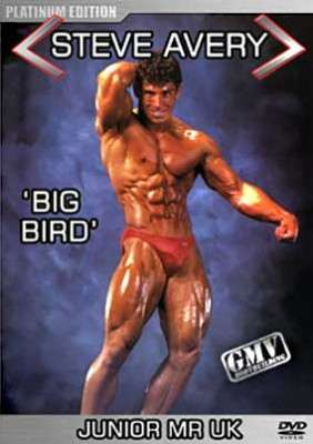 Steve Avery Big Bird