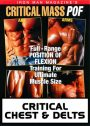 Iron Man's Critical Chest & Delts download